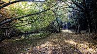 ValleIntelvi_autunno_002